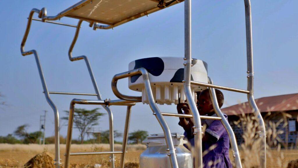 Solar cow udder