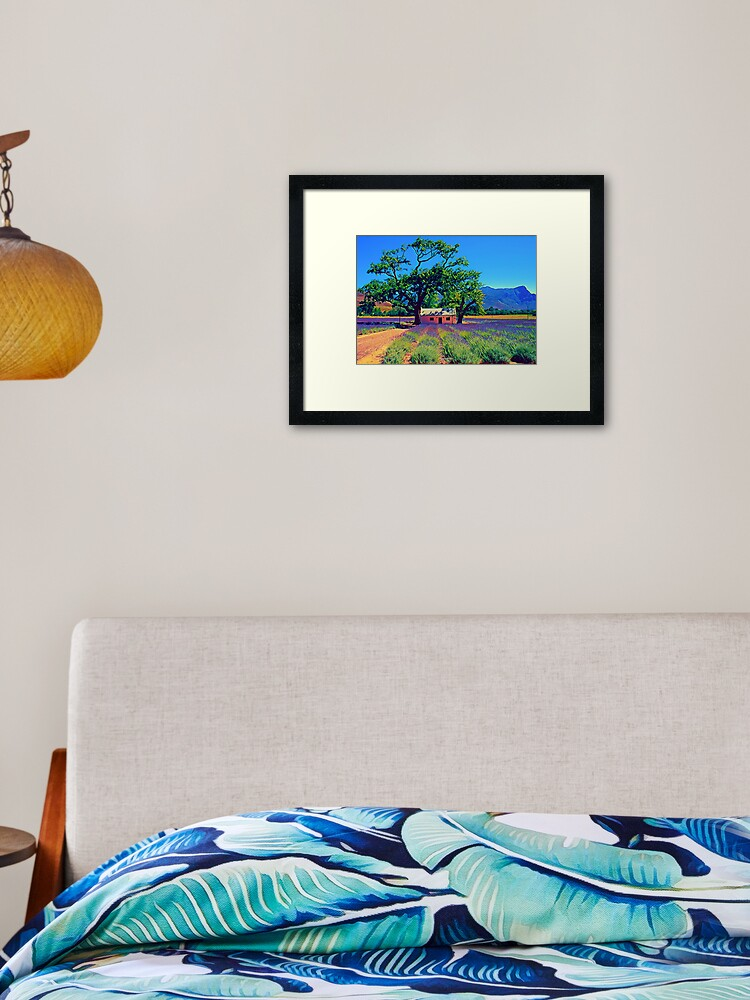 Framed print hanging on wall