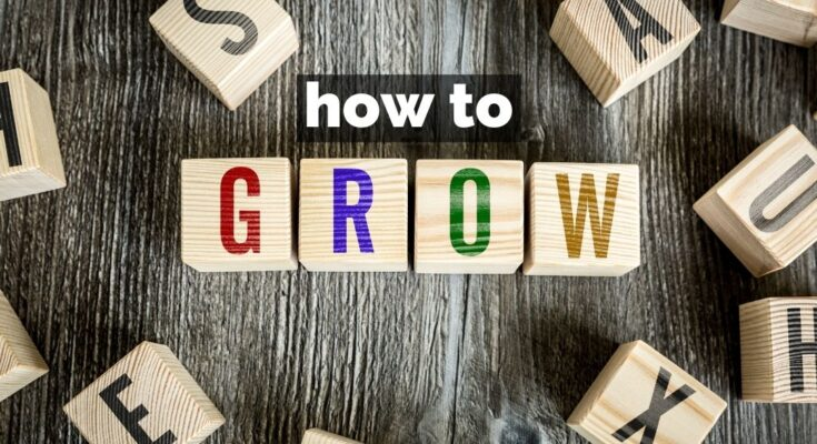 how to grow and scale your business idea